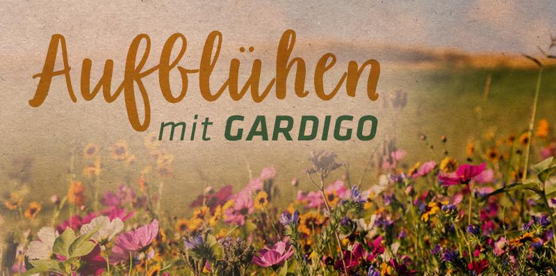 gardigo_homepage_Banner_Seite_Blu-hwiesen_1