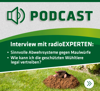 Download: Audiopodcast Maulwurf