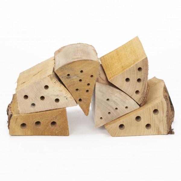 Insekten-Nisthölzer-Nachfüllpack 6 Stück – das 6er-Nisthölzer-Set aus einheimischen Laubhölzern von Gardigo
