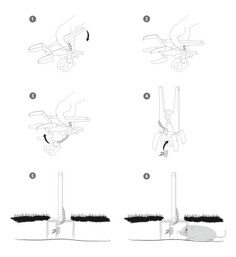 Funktionsweise der Wuehlmauszange