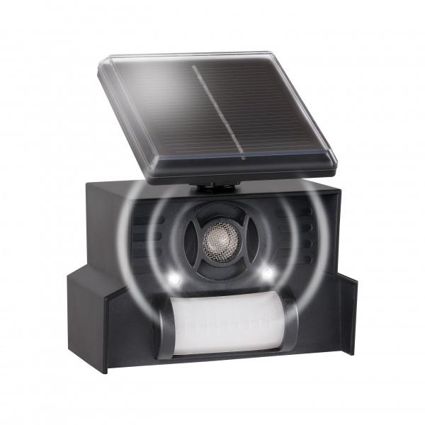 Vogel-Abwehr Solar – die elektronische Vogelscheuche mit Solarpanel, Ultraschall, Blitzlicht und Bewegungsmelder von Gardigo