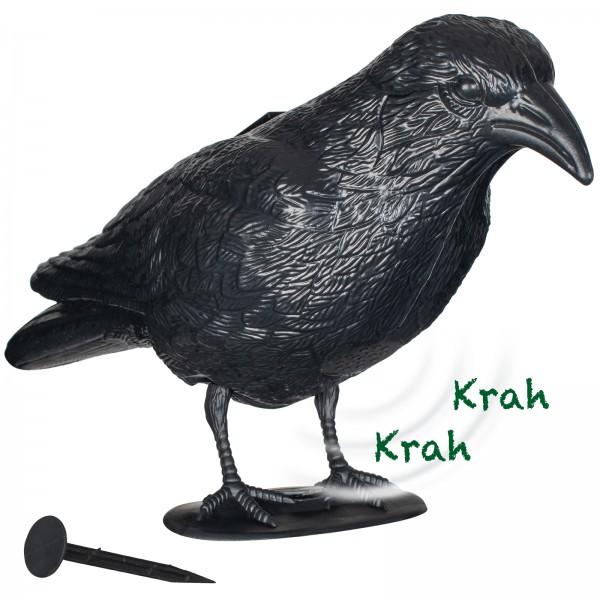 Die Krähe ist mit einem Radar-Bewegungsmelder ausgestattet, der kleine Vögel erkennt und dann einen Krähenschrei abgibt.