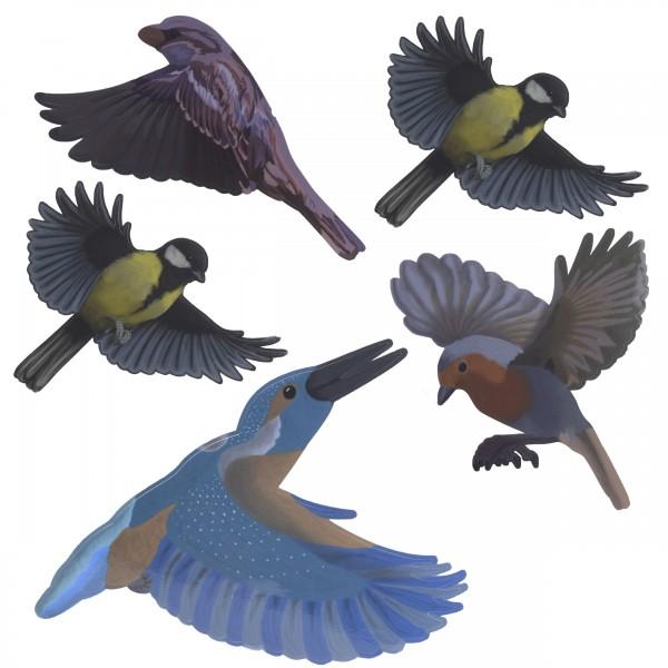 Vogel Silhouetten Heimische Vögel