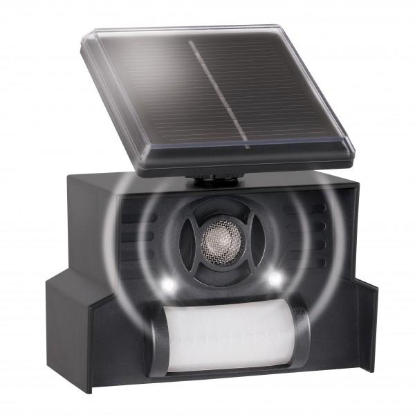 Solar Hunde-Katzen-Abwehr – Der solarbetriebene Hundeschreck und Katzenschreck mit LED-Blitzlicht von Gardigo