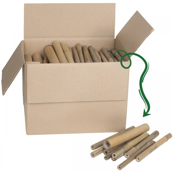 Bambus-Stäbe für Insektenhotels 150 Stück – die Bambus-Röhren in drei verschiedenen Größen für Wildbienen von Gardigo