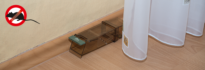 maus lebendfalle gardigo. Black Bedroom Furniture Sets. Home Design Ideas