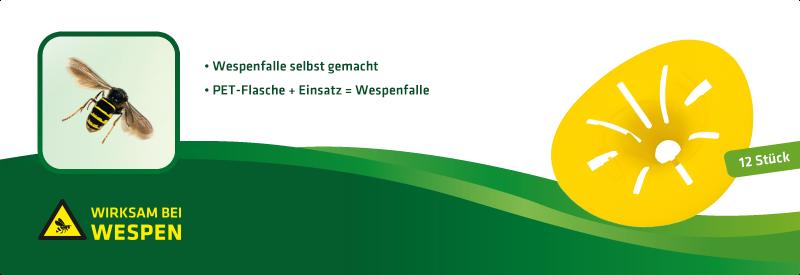 Wespen-Falle DIY 12er-Set