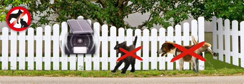 hunde katzen abwehr solar gardigo. Black Bedroom Furniture Sets. Home Design Ideas