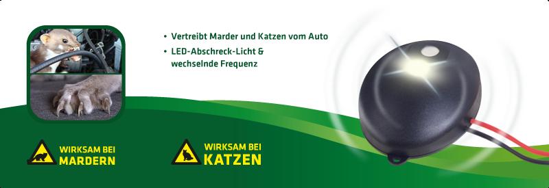 Marder-Katzen-Frei